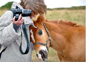 Author with a filly