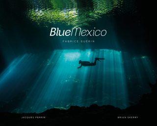 Blue Mexico book cover image